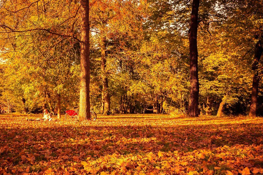 panne d'inspiration saison automne