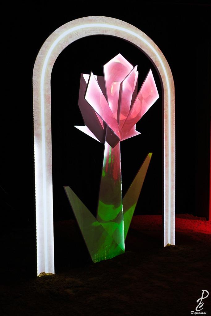 la rose expo petit prince lyon