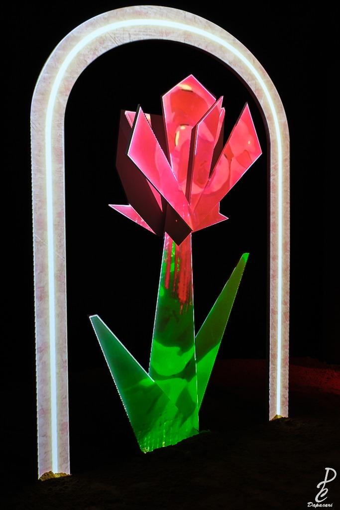 La rose en couleur expo antoine de saint exupery